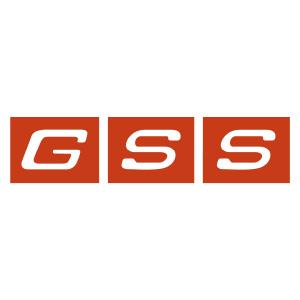 グローバルソリューションサービス 株式会社・ロゴ